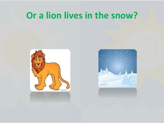 There are many kinds of habitats some with grass some with ice some are very hot and some are very cold