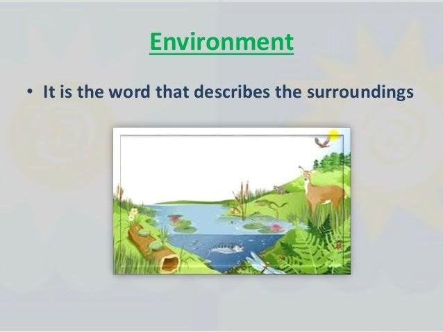 Types of habitats 1- Desert 2- Grassland 3- Wetlands 4- Tundra