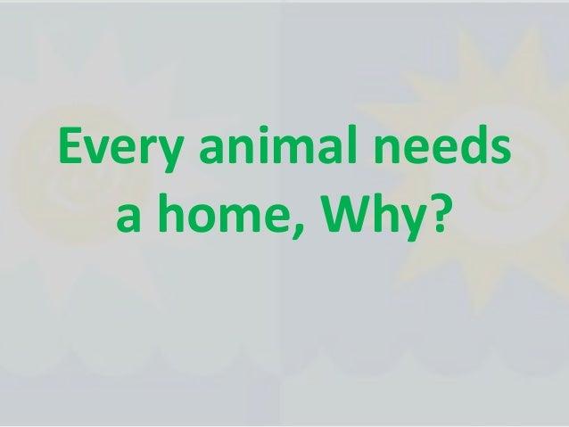 Every animal needs a home, Why?