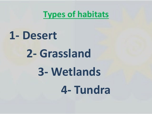 Animals of grasslands