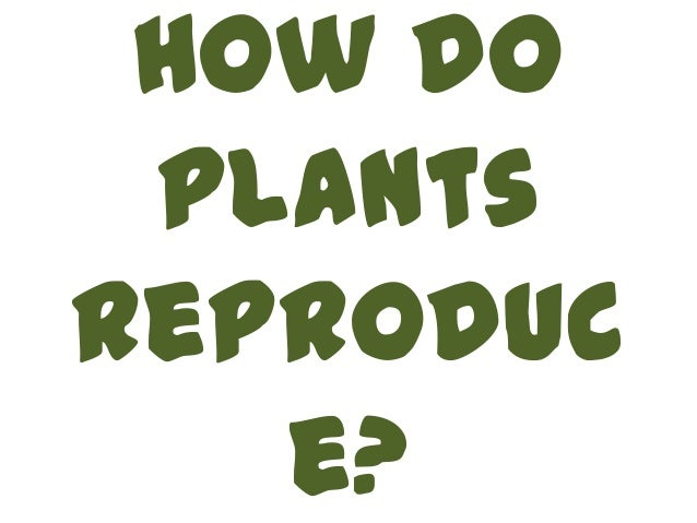 How do plantsreproduc   e?