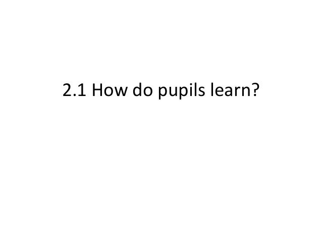 (PDF) How do pupils learn? (Part 1) - ResearchGate