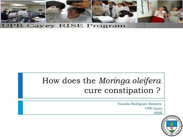 How does the Moringa oleifera cure constipation ? Yanielis Rodriguez Ramirez UPR Cayey RISE