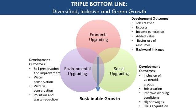 Fiji water triple bottom line