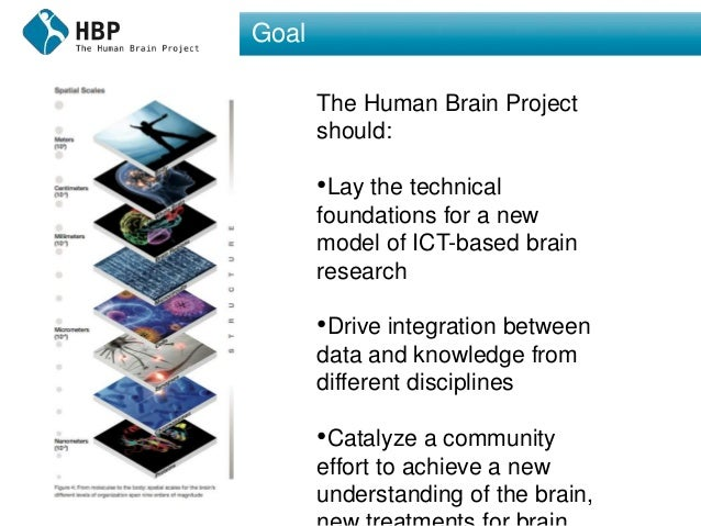 Goal The Human Brain Project should: •Lay the technical foundations for a new model of ICT-based brain research •Drive int...