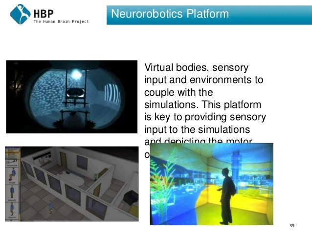 39 Neurorobotics Platform Virtual bodies, sensory input and environments to couple with the simulations. This platform is ...