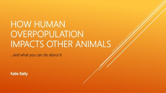 HOW HUMAN OVERPOPULATION IMPACTS OTHER ANIMALS …and what you can do about it Katie Batty