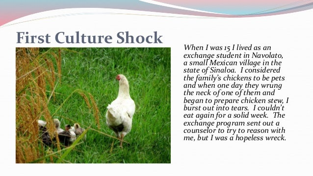 How I Became a Sexual Anthropologist Slide 3