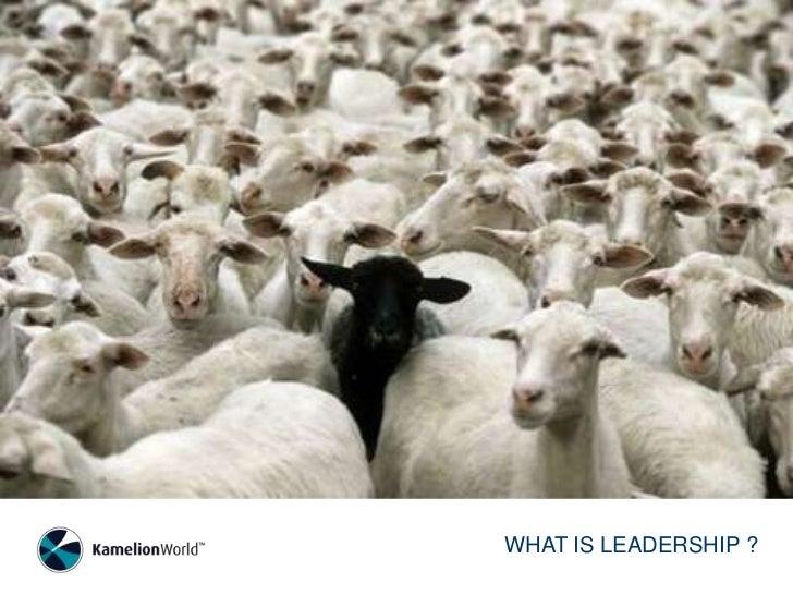 WHAT IS LEADERSHIP ?