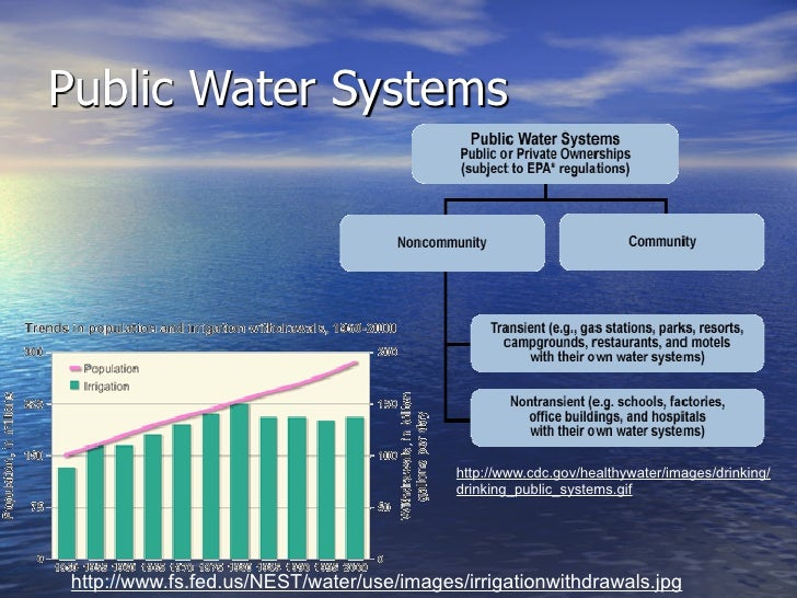Why is it Important to Clean Our Water?