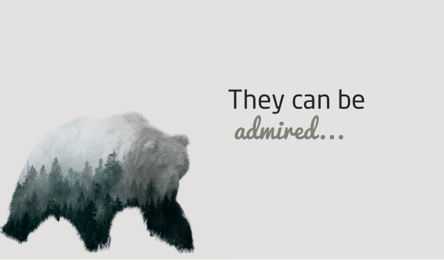 They can be admired...