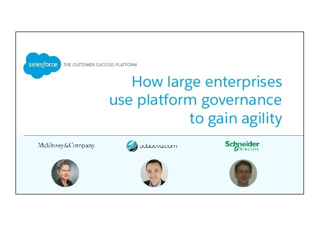How large enterprises use platform governance to gain agility