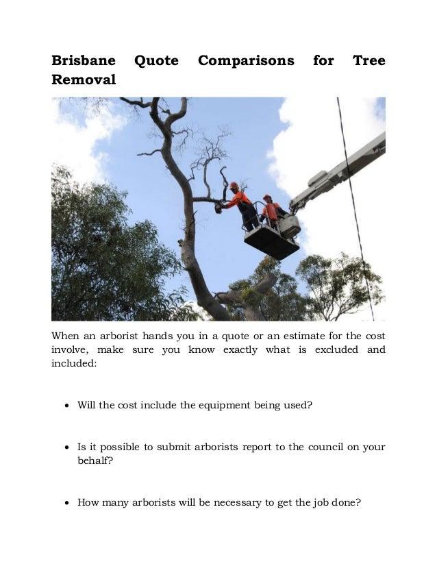 tree surgery, training course, Northern Ireland, Lantra ...