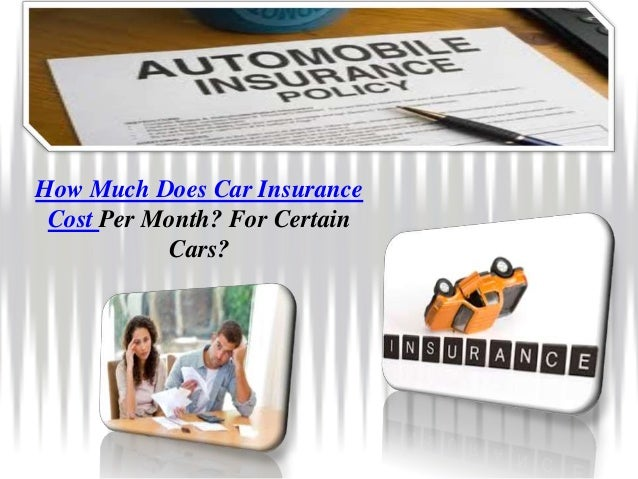 how much does car insurance cost. Black Bedroom Furniture Sets. Home Design Ideas