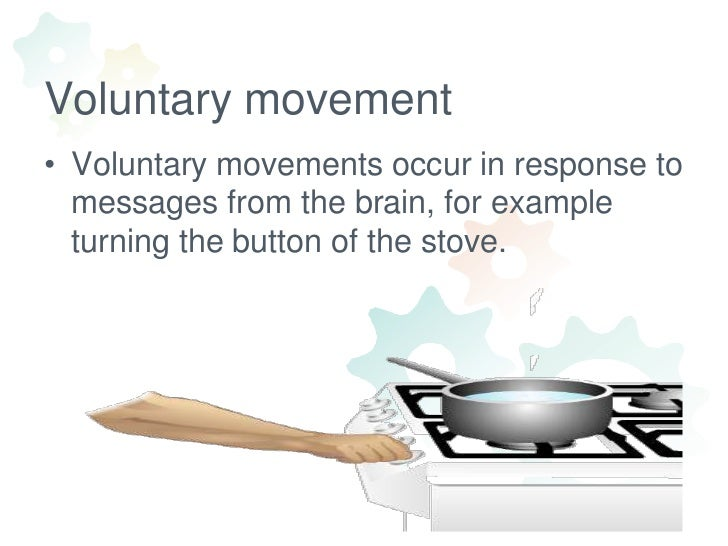 examples of voluntary or undetermined action or movement Voluntary and involuntary actions there are two main kinds of actions that our body an impulse, neurons and effectors however they are differents voluntary actions: a voluntary action is basically an action which you yourself initiate by your own conscious your cerebral.