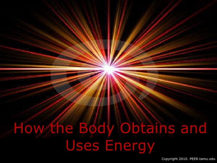 How the Body Obtains and Uses Energy Copyright 2010. PEER.tamu.edu