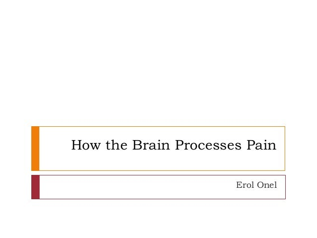 How the Brain Processes Pain Erol Onel