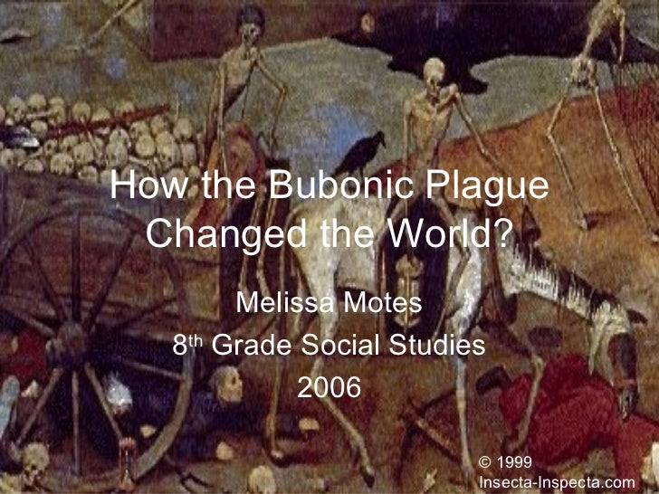 How the Bubonic Plague Changed the World? Melissa Motes 8 th  Grade Social Studies 2006 © 1999 Insecta-Inspecta.com