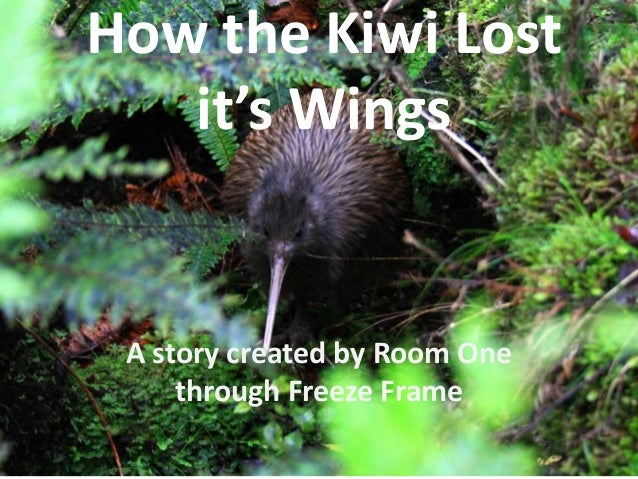 How the Kiwi Lost it's Wings A story created by Room One through Freeze Frame