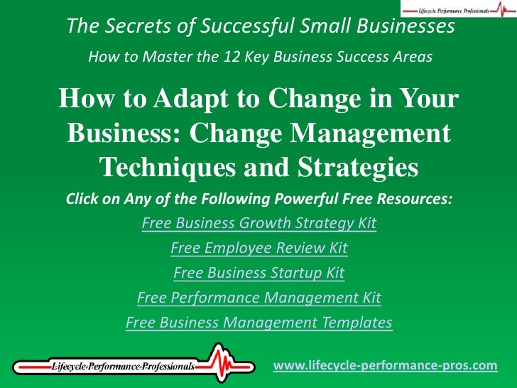 The Secrets of Successful Small Businesses<br />How to Master the 12 Key Business Success Areas<br />How to Adapt to Chang...