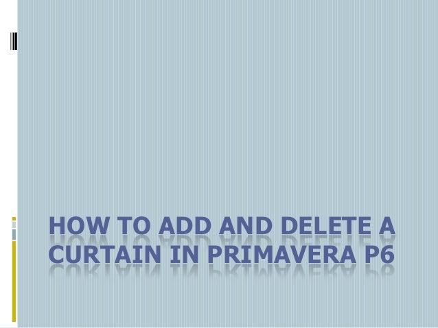 HOW TO ADD AND DELETE A CURTAIN IN PRIMAVERA P6