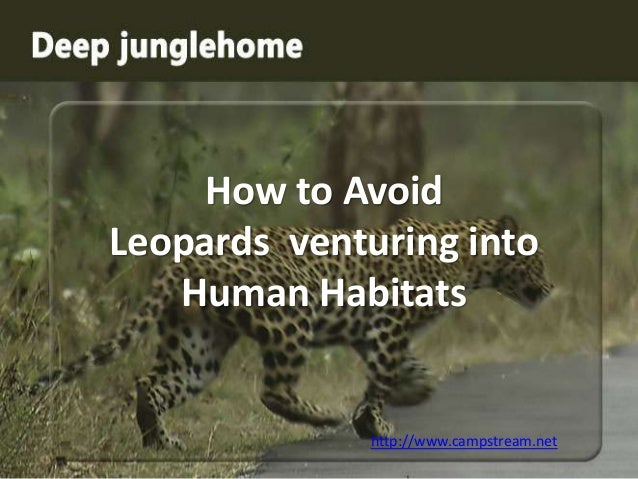 How to Avoid Leopards venturing into Human Habitats  http://www.campstream.net