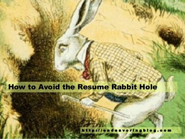 How To Avoid The Resume Rabbit Hole H T T P : / / E N D E A V O R I N G B L  O G .  Resume Rabbit Cost