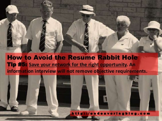 resume rabbit worth it