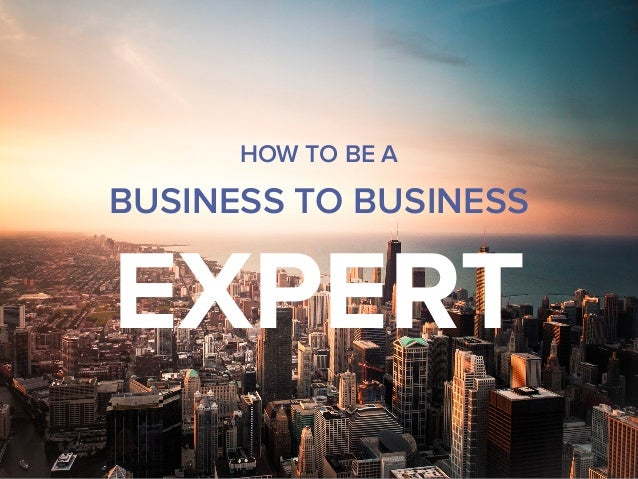 HOW TO BE A BUSINESS TO BUSINESS EXPERT