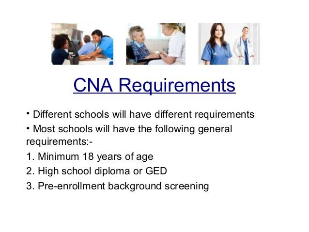essential guide on how to become a cna, Human body
