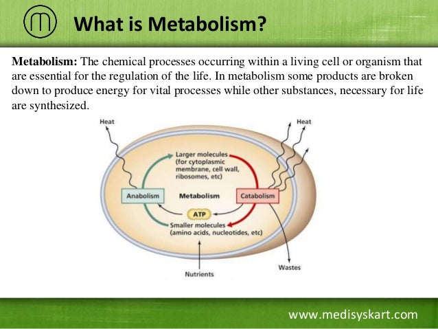 what is biosynthesis Biosynthesis definition is - the production of a chemical compound by a living organism the production of a chemical compound by a living organism.