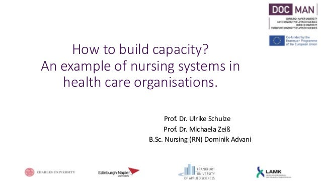 How to build capacity? An example of nursing systems in health care organisations. Prof. Dr. Ulrike Schulze Prof. Dr. Mich...