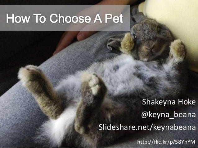 Shakeyna Hoke @keyna_beana Slideshare.net/keynabeana http://flic.kr/p/58YhYM
