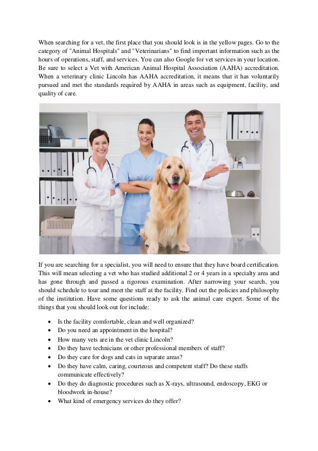 How to choose a veterinary clinic lincoln
