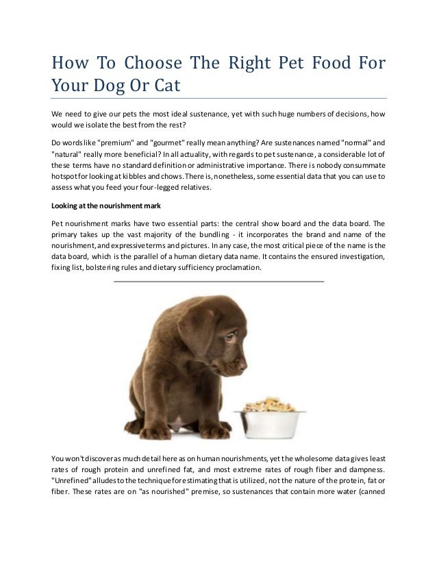 How to choose the right food for pets
