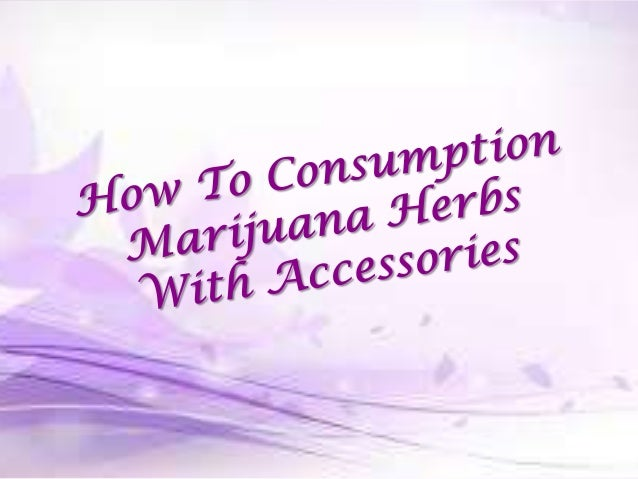 CONTENTS  Information about Marijuana Herbal  Tools that used to intake marijuana herbs  Way to affects from consuming ...