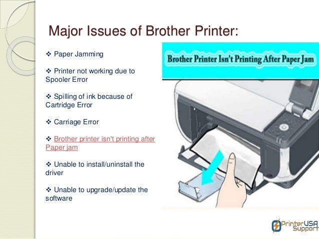 How to Contact Brother Printer Support Team?