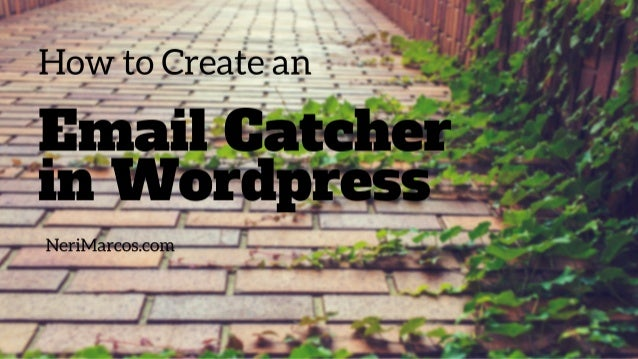how to create an email on wordpress