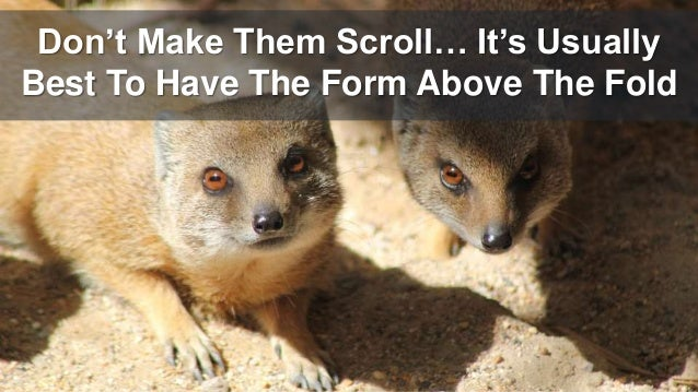 Don't Make Them Scroll… It's Usually Best To Have The Form Above The Fold
