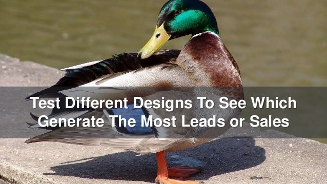 Test Different Designs To See Which Generate The Most Leads or Sales