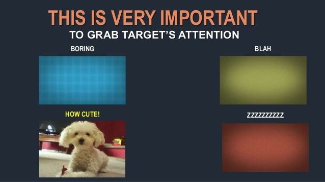 THIS IS VERY IMPORTANT TO GRAB TARGET'S ATTENTION HOW CUTE! ZZZZZZZZZZ BORING BLAH