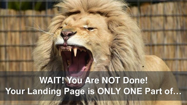 WAIT! You Are NOT Done! Your Landing Page is ONLY ONE Part of…