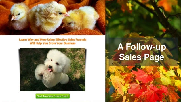 A Follow-up Sales Page