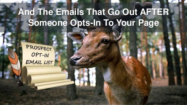 And The Emails That Go Out AFTER Someone Opts-In To Your Page
