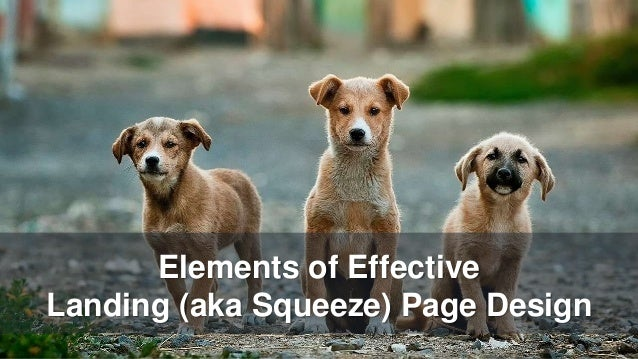 Elements of Effective Landing (aka Squeeze) Page Design