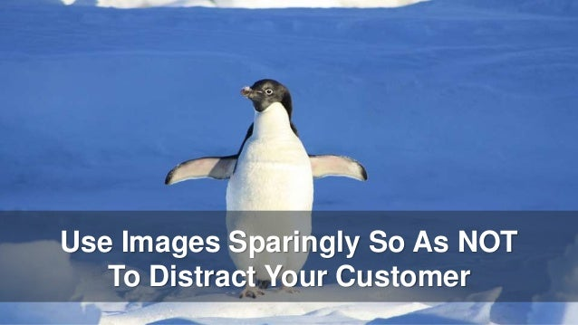 Use Images Sparingly So As NOT To Distract Your Customer