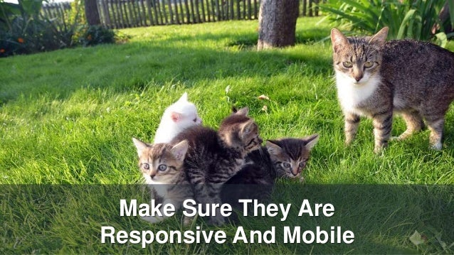 Make Sure They Are Responsive And Mobile