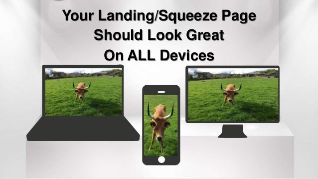 Your Landing/Squeeze Page Should Look Great On ALL Devices