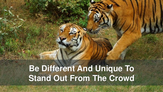 Be Different And Unique To Stand Out From The Crowd
