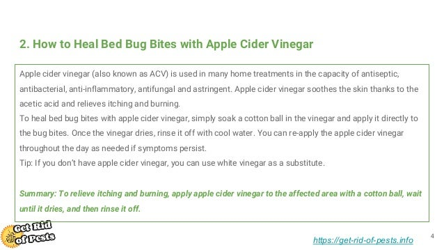 How To Cure Bed Bug Bites 49 Home Remedies For Bed Bug Bites